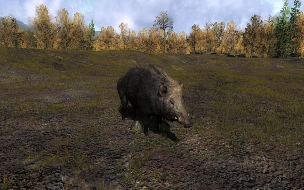 The Hunter 2013 скачать торрент - фото 2